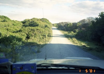 Road down to Arthur river.